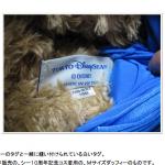 出典:Yahoo!知恵袋 東京ディズニーシー ダッフィーの、「製造年」が分るノート