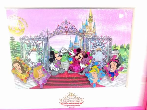 ディズニー ミッキー&ミニー&ベル&オーロラ姫他 ディズニーピンバッジセット 6個 プリンセスデイズ 額入り