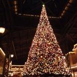 真夏だけど昨年のクリスマスのインレポとグッズ紹介。ロマンチックなイベント☆ディズニークリスマス